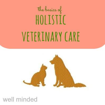 holisticvetcare