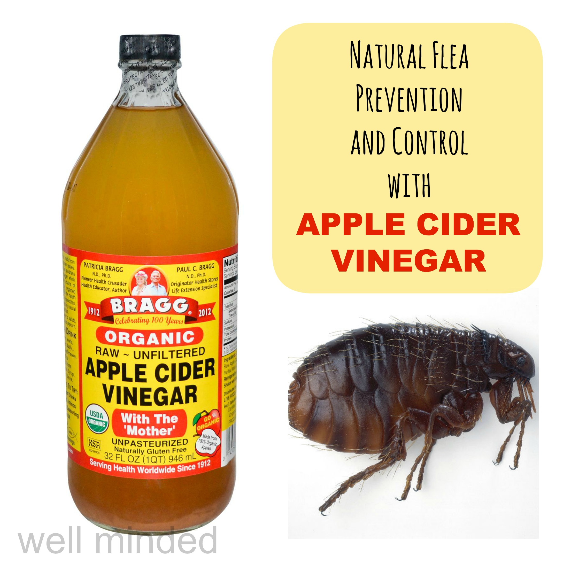 Natural Flea Treatment For Dogs Vinegar